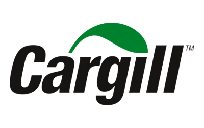 Cargill Salt Construction Underway